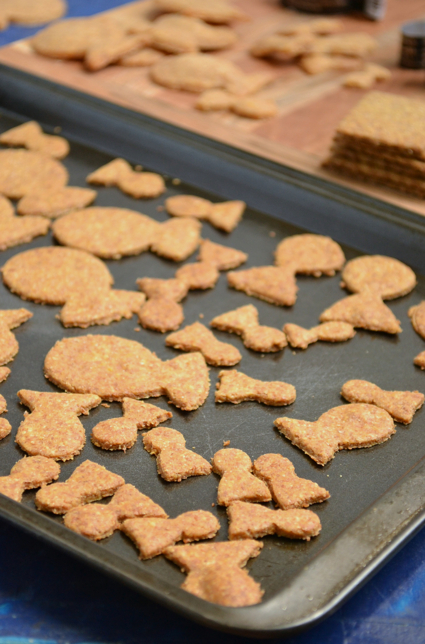 Homemade Goldfish Crackers and DIY Goldfish Cookie Cutter