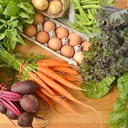 Thumbnail image for Fresh Food