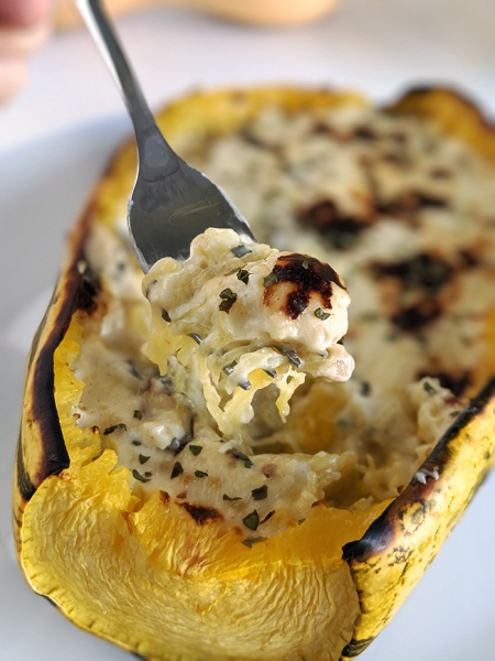 Easy Spaghetti Squash Alfredo (gluten-free, grain-free options)