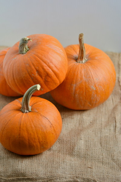Homemade Thick Pumpkin Puree Image