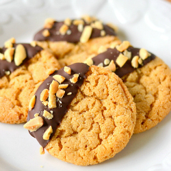 Thumbnail image for Chocolate Dipped Flourless Peanut Butter Cookies – Naturally Gluten, Grain and Dairy Free!