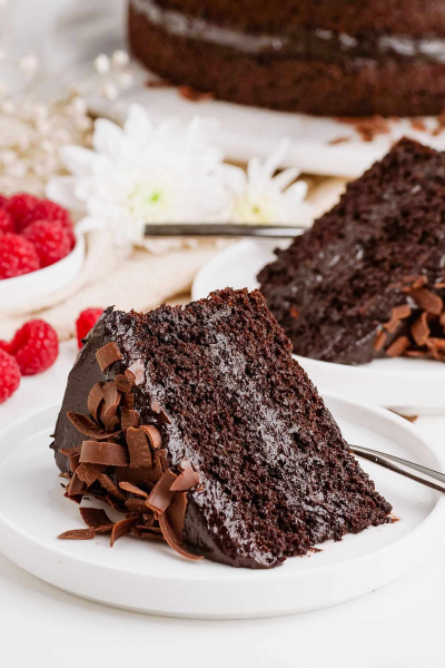 healthy chocolate cake slice on white plate