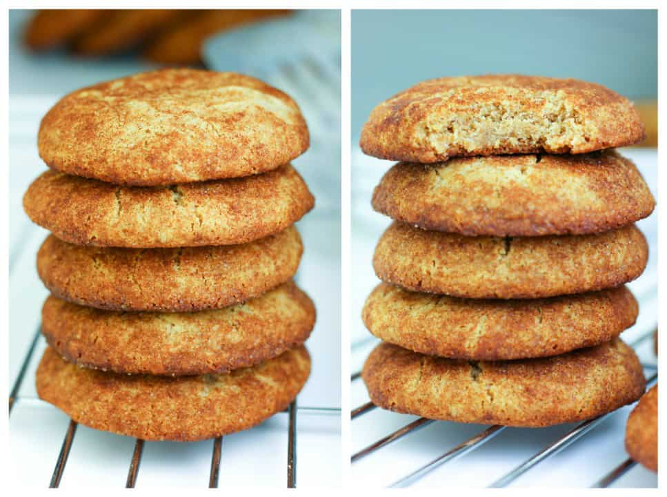 Paleo and AIP Snickerdoodles